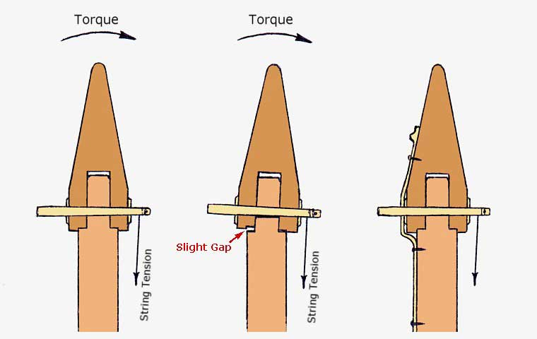 cross-sections through a typical neck-to-forepillar joint