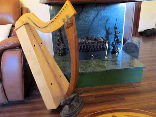 Home is where harps and dogs can be found. A photograph of harp and hearth.