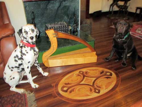 A photograph of two dogs, a harp, and hearth.