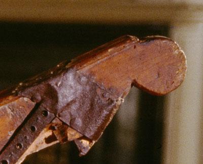 Clonalis Harp detail head