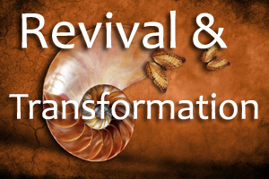 Revival and Transformation page